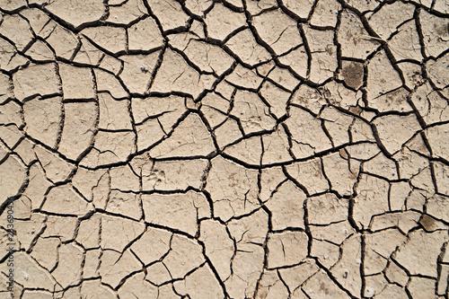 Fotomural crack earth in arid area