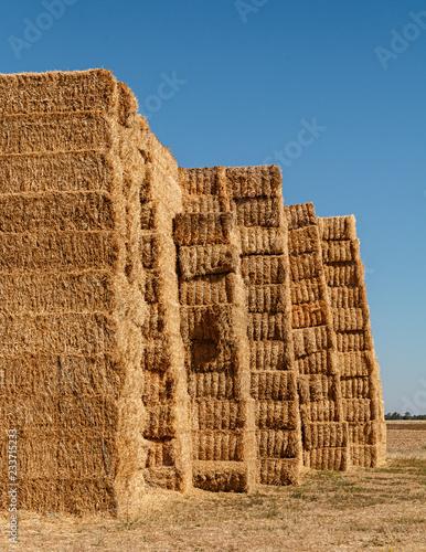 Fotografía  Straw bales at Ribera de Duero fields