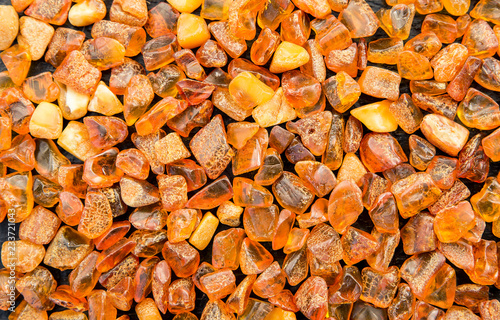 Obraz Whole background covered with chips of orange baltic amber. The Baltic region is home to the largest known deposit of amber, called Baltic amber or succinite. - fototapety do salonu