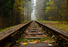 Railway, Fog In The Forest. Fa...