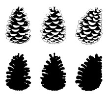 Set Of Different Pine Cones Isolated On White