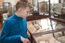 A Teenager Boy Examines Exhibi...