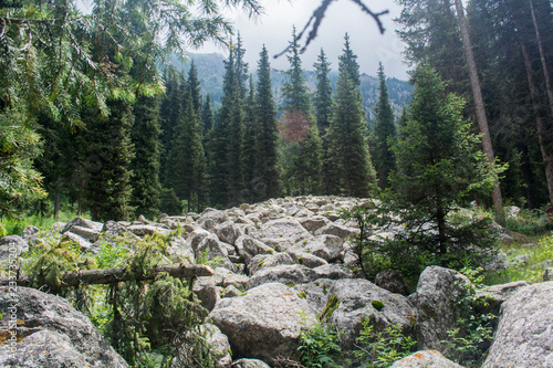 Fotografie, Obraz  Rockfall Moonlight valley