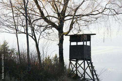 Hunt, Hide, Jagd, Jagdsitz, Hochsitz, Hochstand, Jagdkanzel, Nebel, Textraum, copy space