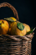 Close Up Of Quince Fruits In W...