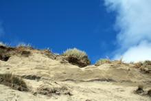 Sand Dunes Barley Cove Beach W...