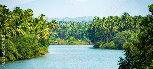 Alleppey's backwater, beautiful canal surrounded by a green and lush vegetation with palm trees Canvas Print