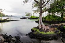 Tranquil Inlet At Hawaiian Bea...