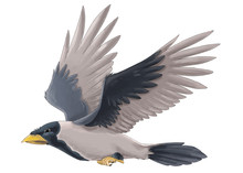 Cartoon Bird - Crow Flying On ...