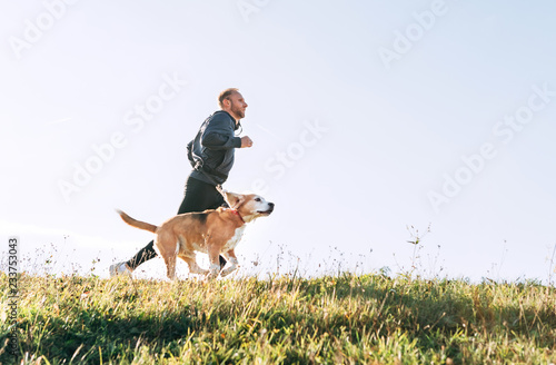 Obraz na plátně  Man runs with his beagle dog. Morning Canicross exercise.