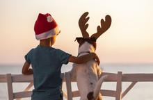 Christmas On A Beach Concept W...