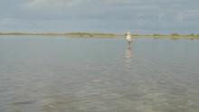 Man Wading In A Flat Lagoon Fi...