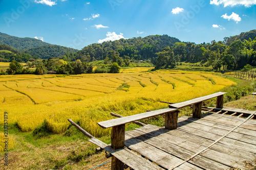 Spoed Foto op Canvas Meloen Beautiful landscape view of rice terraces and house