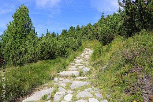 Plakat kamienna droga w górach