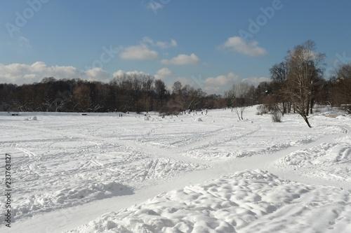 Fotobehang Winter Shibaevsky pond in the natural-historical park