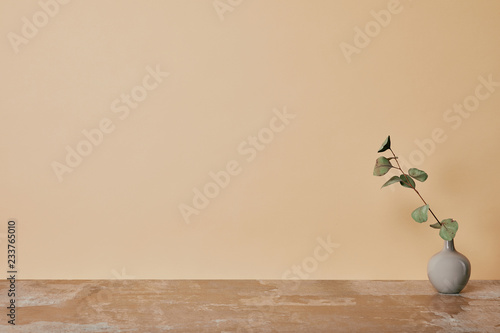 Photo Vase with flower on table on beige background