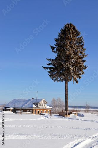 Fotografie, Obraz  зимний пейзаж
