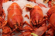 Red Boiled Lobsters On Ice In ...