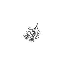 Kitchen Logo Element, Linden Blossom. Vector Hand Drawn Object.