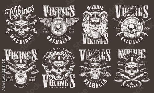 Photo  Vintage viking emblems collection