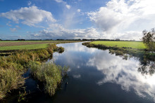 Dutch Polder Landscape In The ...