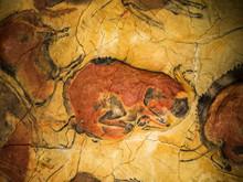 Bisonte Rojo De La Cueva De Altamira, Santillana Del Mar, Cantabria, España