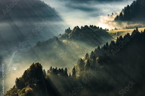 krajobraz-mglisty-las-i-dolina-gorska-jesienna-mgla-polska-i-slowacja
