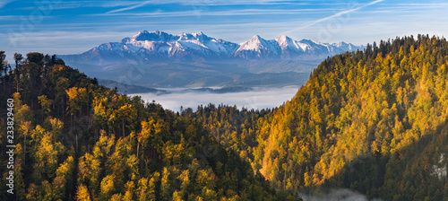 Foto auf Gartenposter Gebirge Morning panorama of Tatra mountains over yellow autumn beech forest, Poland
