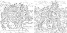 Coloring Pages With Wildcat And Boar