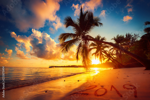 Fototapeta Happy New Year 2019. Sunrise over tropical beach in Punta Cana, Dominican Republic obraz na płótnie