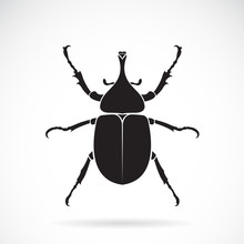 Vector Of Dynastinae On A White Background. Insect. Animal. Beetle. Easy Editable Layered Vector Illustration.