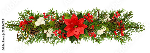 Fototapeta Evergreen twigs of Christmas tree, poinsettia flower, berries and holiday decorations in a garland obraz