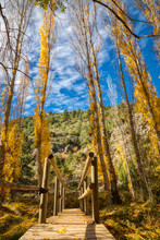 A Vertical Photo With Shallow Depth Of Field Focused On A Small Wooden Pedestrian Bridge Crossing A Creek In A Green And Golden Forest In Autumn At The Foot Of A Mountain - Blue Sky, White Clouds
