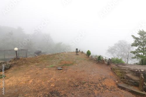 Fotografie, Obraz  Moody fog over mountain scenery in rainy day.