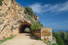 The Southern Entrance To Natur...