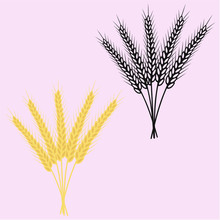 Ears Of Wheat Vector Silhouette Isolated