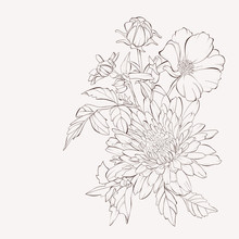 Vector Dahlia Flowers And Tea Rose. Autumn Flowers Bouquet.  Element For Design. Sketch Hand-drawn Contour Lines And Strokes.