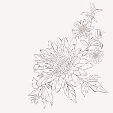 Vector Dahlia Flower. Autumn Flowers Bouquet.  Element For Design. Hand-drawn Contour Lines And Strokes.