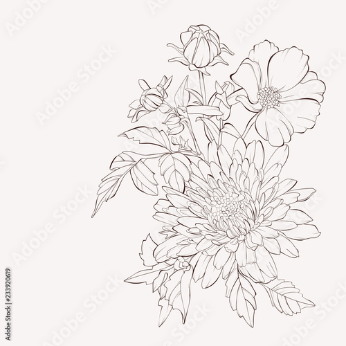 Vector dahlia flowers and tea rose Poster Mural XXL