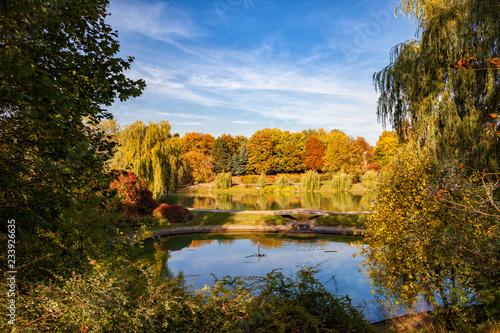 Fototapeta Moczydlo Park in City of Warsaw obraz