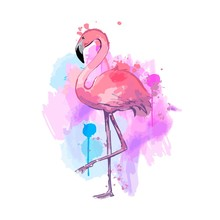 Pink Watercolor Flamingo. Beau...