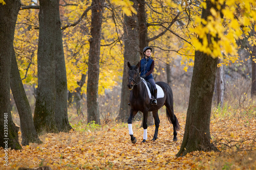 Fotografie, Tablou Teenage girl riding horse in autumn park