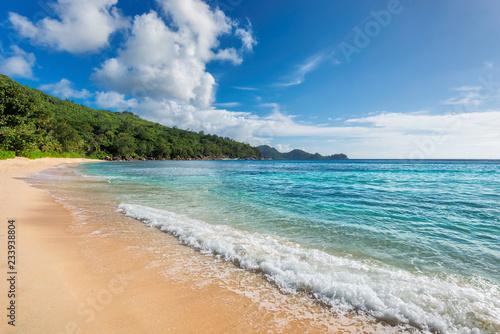 Foto auf Leinwand Tropical strand Caribbean beach and tropical island. Summer vacation and tropical beach concept.