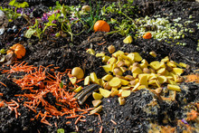 Rich Colorful Garden Soil And Compost Pile