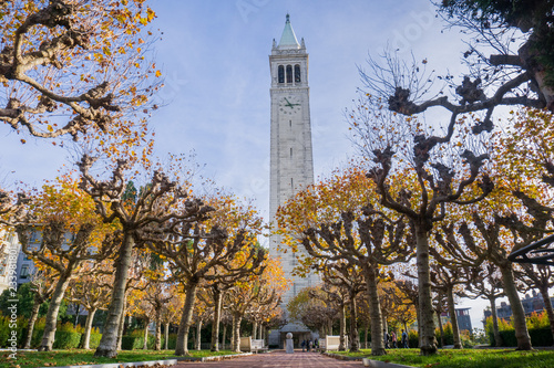 Foto Alley lined up with autumn colored trees; Sather (Campanile) tower in the backgr