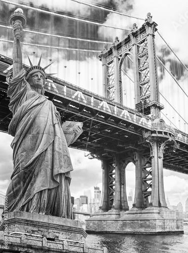 Statua Wolności przeciw Manhattan mostowi, Nowy Jork. USA