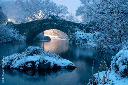 Photo Gapstow bridge during winter, Central Park New York City. USA