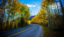 Perfect Mountain Road Weaves Through Fall Color In October Mountains