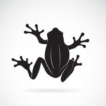 Vector Of Frog Design On White Background. Amphibian. Animal. Frog Icon. Easy Editable Layered Vector Illustration.