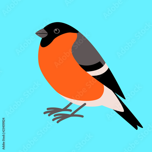 Canvastavla bullfinch bird , flat style ,profile